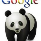 SEO Strategies- Keeping Up with the Panda!