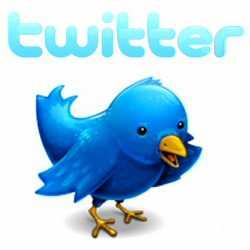 Twitter birdie