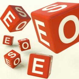 SEO Process of Your SEO Company